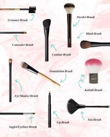 makeupbrushguide